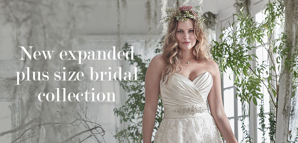 lulus-bridal-plus-size-homepage-banner